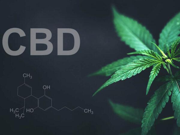 Essential CBD Extract 08